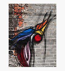 Graffiti Bird on Red and Grey Brick Wall Photographic Print