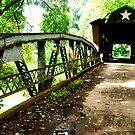 Otway Bridge, Ohio by HeatherMScholl