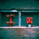 Fire Hydrant by Mary Grekos