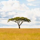 Tree Of Life - Serengeti Plains Tanzania Africa 5100 by neptuneimages