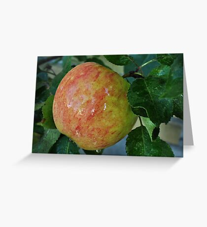 An apple a day..... Greeting Card