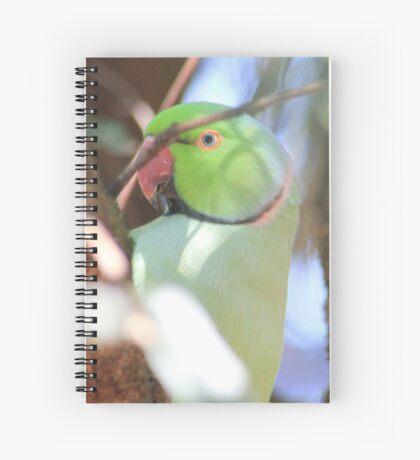 Blue-eyed Boy in my garden Spiral Notebook