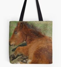 Rolling Pony Tote Bag
