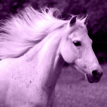 Purple White Horse Head by PaintingPony