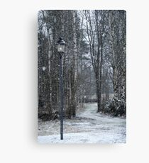 Snow-time Canvas Print