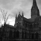 Saulsbury Cathedral by Snowkitten
