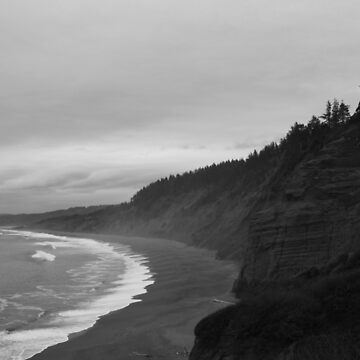 #1070      Agate Beach At Patrick's Point by MyInnereyeMike