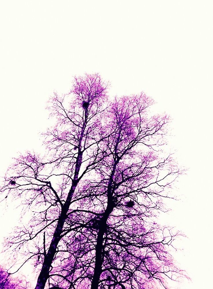 Lila Winter Bäume von RanitasArt