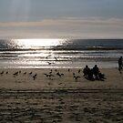Newport beach by Dalmatinka