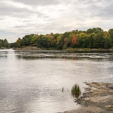 Burnished Silver Current - Mississagi River Autumn  by GeorgiaM