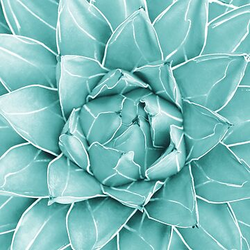 Agave Queen Succulent #2 #tropical #decor #art by anitabellajantz