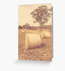 Vintage country farmyard in outback Australia Greeting Card
