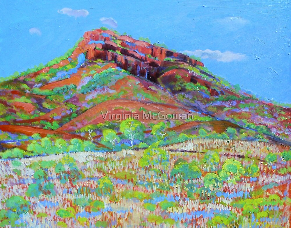 Kununurra Cliff Landscape  #3 by Virginia McGowan