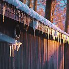 Icicles by distracted