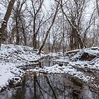 Snow At The Finley by Jennifer White