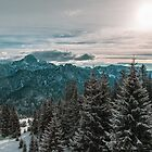 winter day in the alps of Friuli Venezia-Giulia by zakaz86