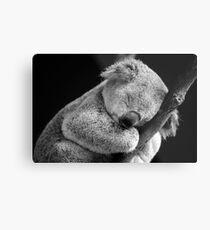 Wake Me Later - Sleeping Koala Metal Print
