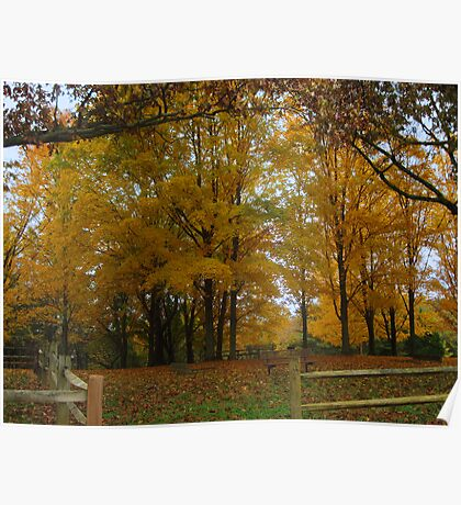 Remembering Autumn Poster