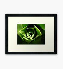 the green beauty Framed Print