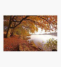 Autumn Pool Photographic Print