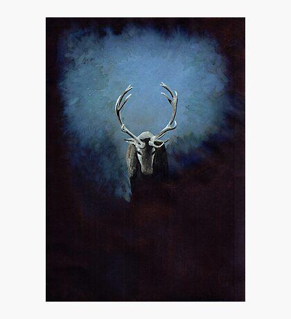 Cerf Magique Impression photo