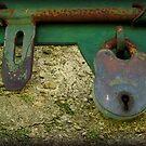 Locked by Shelley Heath