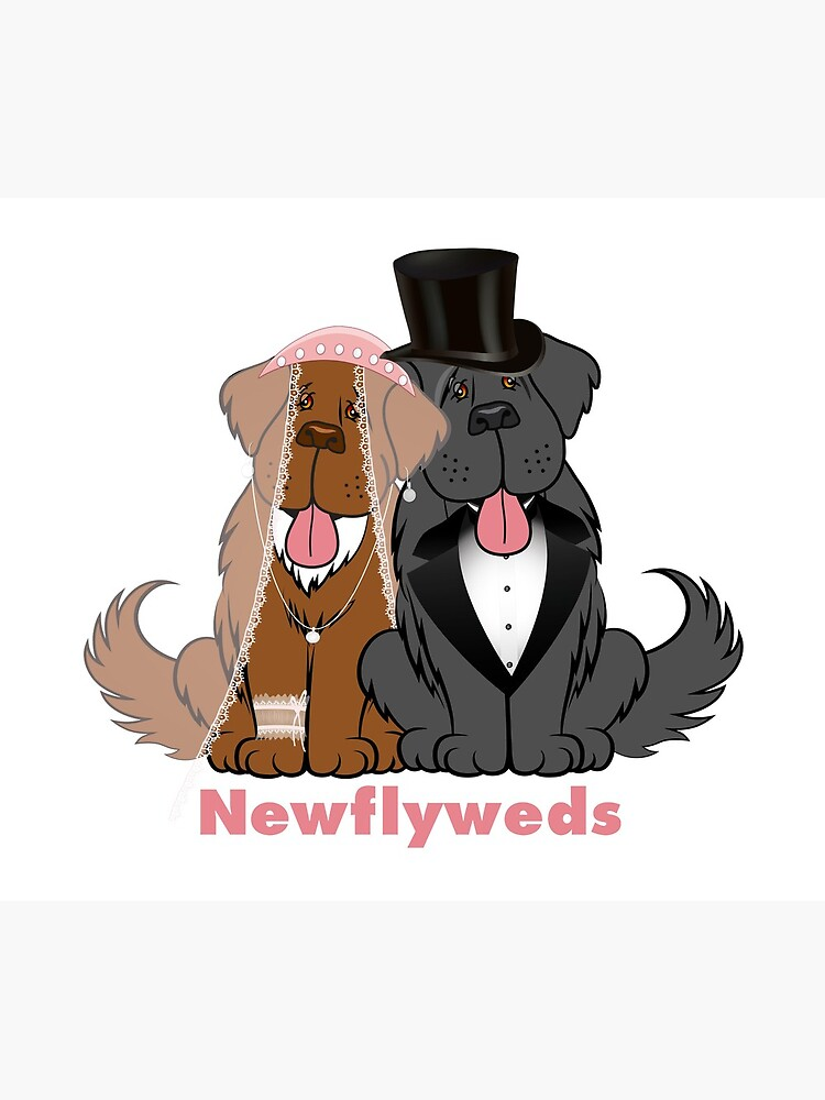 Newflyweds by itsmechris