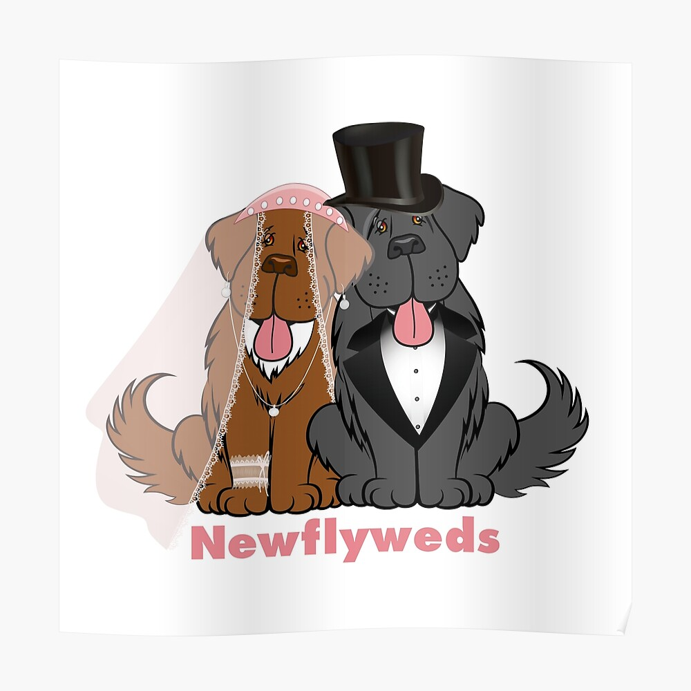 Newflyweds Poster