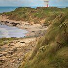 Waipapa Point and Lighthouse New Zealand by joancarroll