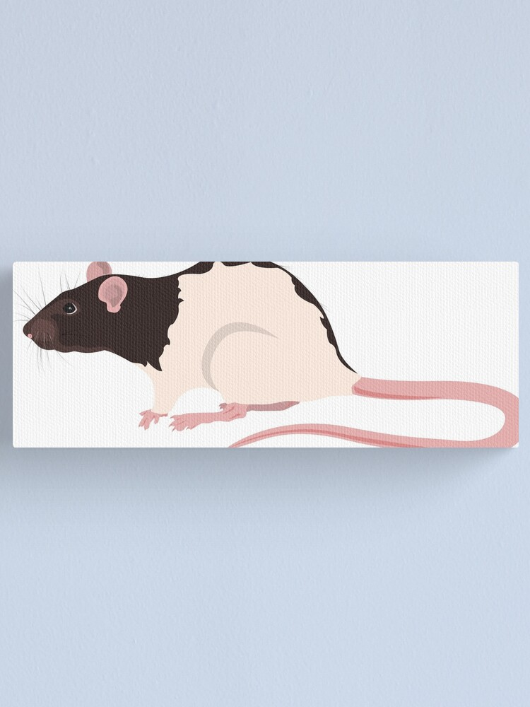Alternate view of Hooded Rat Canvas Print
