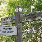 fingerpost - Melrose - Southern Upland Way by Babz Runcie