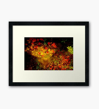 Spring or Autumn? Framed Print