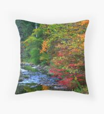 Scenic Autumn landscape Throw Pillow