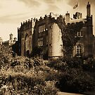 Birr Castle Demesne by Martina Fagan