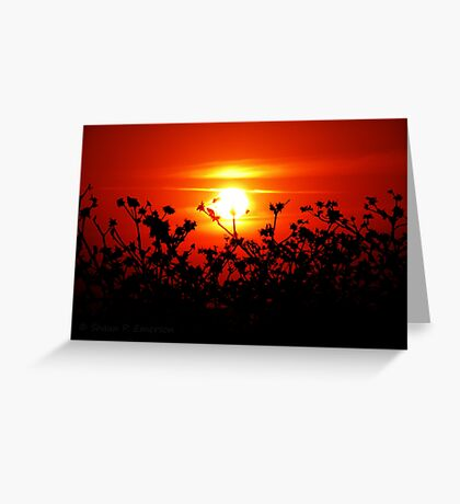 Sunset in Paradise - unedited Greeting Card