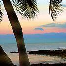 Last sunbeams at Smather's Beach in Key West, FL by Susanne Van Hulst