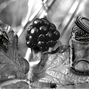 Beetle Black Berry Jar by GolemAura