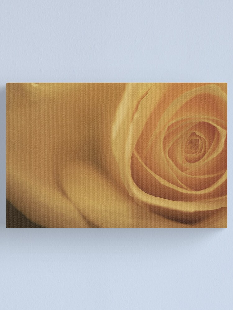 Alternate view of White Rose (off center) Canvas Print