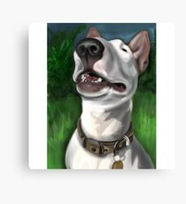 Lola English Bull Terrier Painting 2 Canvas Print