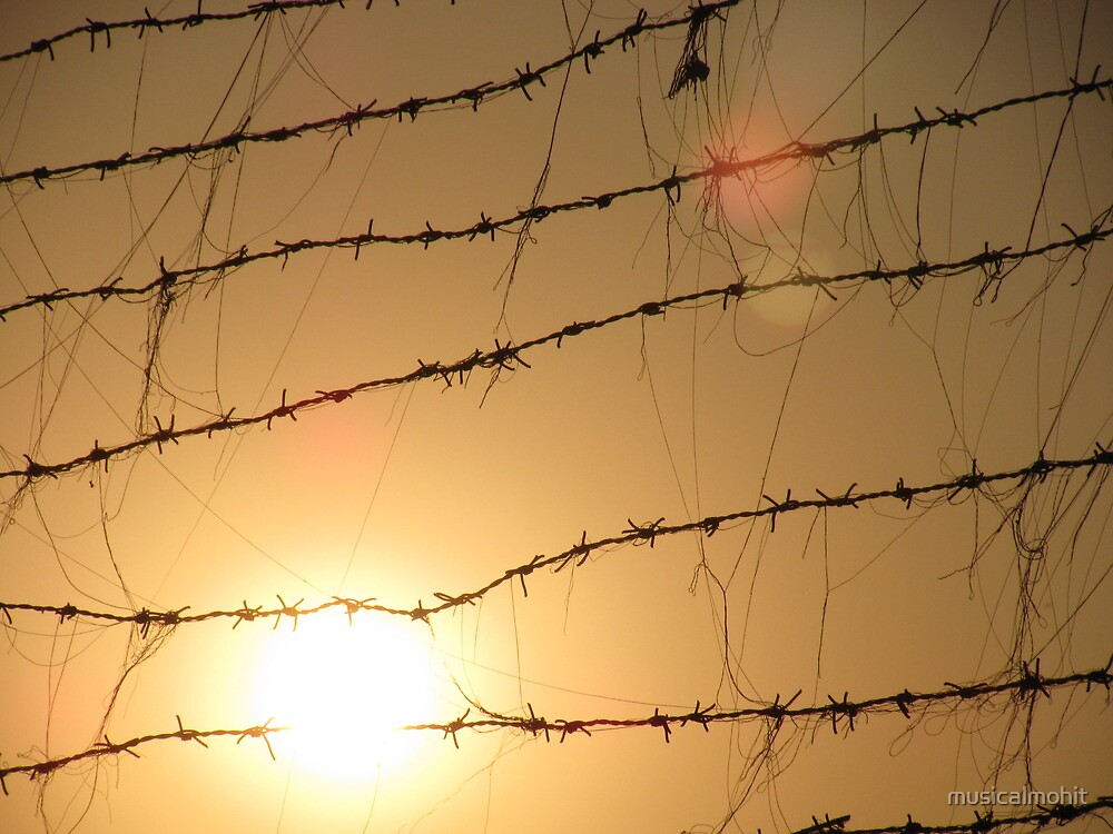 I captured the sun in barbed wire by musicalmohit