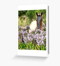 Am I blue today? Greeting Card