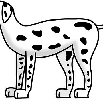 Dalmatian dog puppy dog by Scirocko
