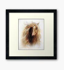 Sundance Horse Portrait Framed Print
