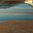 Wings over Lake Eyre by Andrew Mather