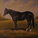 Quarterhorse by Birgit Schnapp