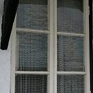 Chainmail curtains, Cumbria by BronReid