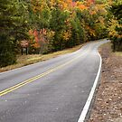 Autumn on the Talimena Scenic Byway by Gregory Ballos