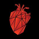 Fractured Geometric Anatomical Heart by phdannie