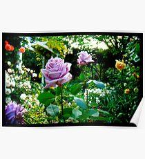 Naik Michel Photography - Hortensia House Garden Purple Flower Roses 001 Poster
