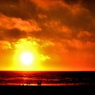 Pacific Sunset  by NancyC